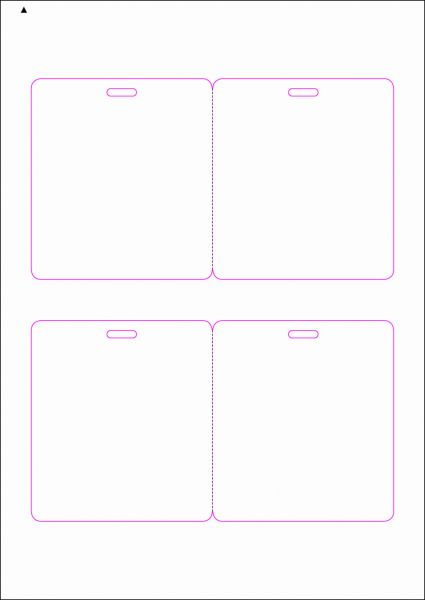 Zugangsausweis-Etiketten 90x100 mm, DIN AA, weiss, matt, permanent klebend - SE70-15255P